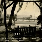 Fernwood by the Sea 2